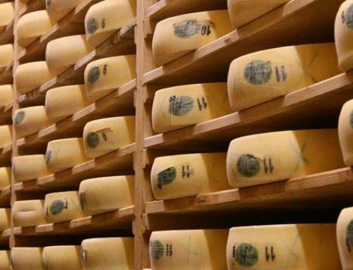Le Comté, Histoire d'un grand fromage